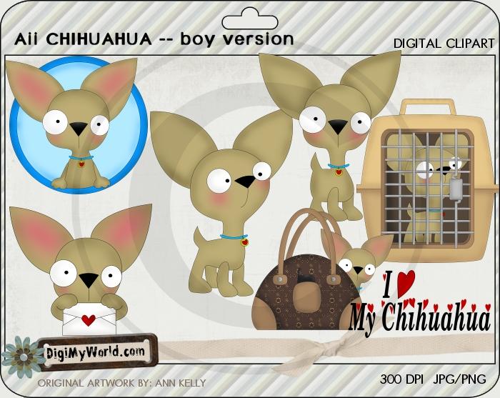 Aii Chihuahua BOY