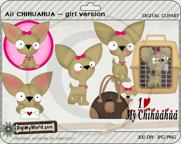 Aii Chihuahua GIRL