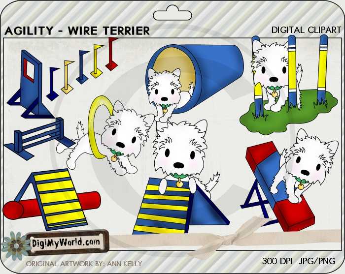 Agility - Wire Terrier